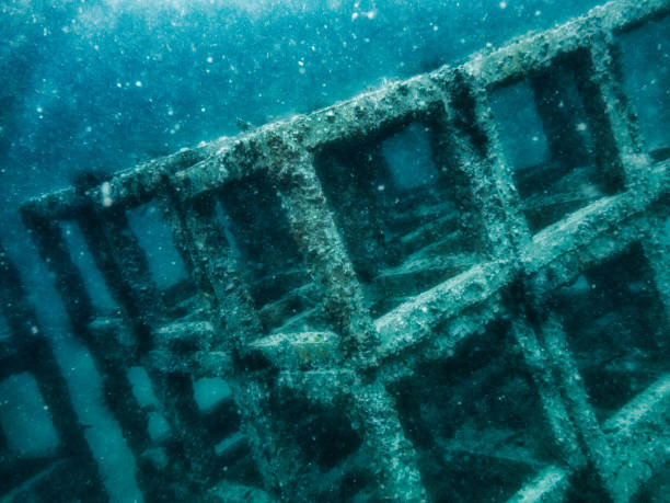 underwater eco tourism artificial reef, coral restoration project, viking bay, phi phi islands, thailand - artificial reef stock pictures, royalty-free photos & images