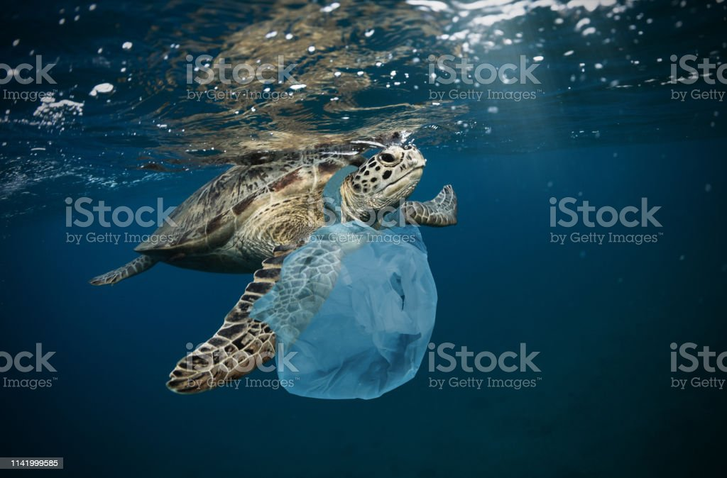 Underwater global problem with plastic rubbish - Foto stock royalty-free di Acqua