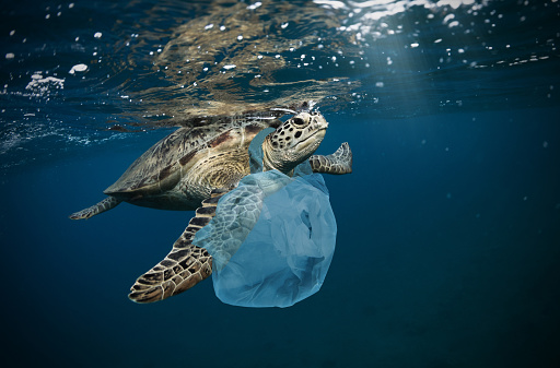 Underwater Global Problem With Plastic Rubbish - Fotografie stock e altre immagini di Acqua