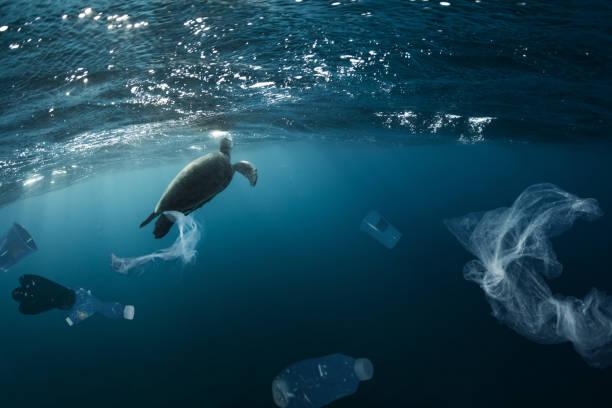 Globales Unterwasserproblem mit Plastikmüll – Foto