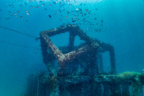 underwater innovative eco tourism artificial reef coral nursery conservation project concrete structure - artificial reef stock pictures, royalty-free photos & images