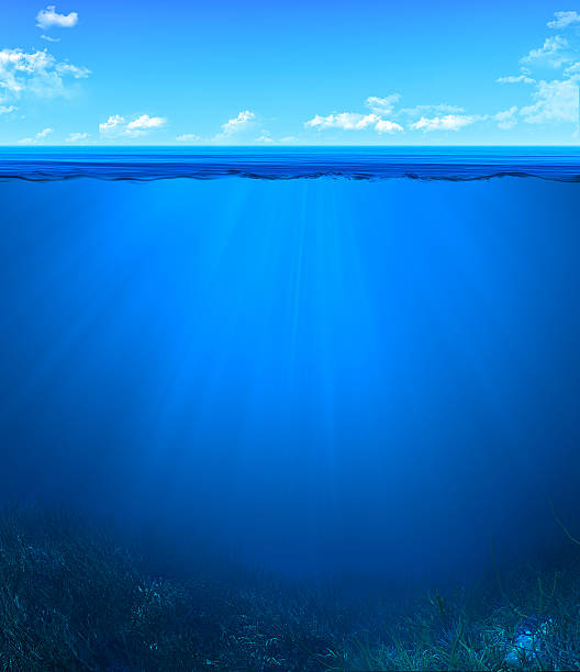 underwater landscape underwater landscape undersea stock pictures, royalty-free photos & images