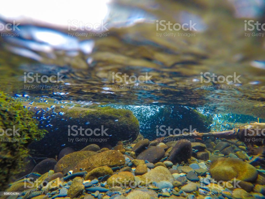 Underwater of a lake in Smoky Mountains stock photo