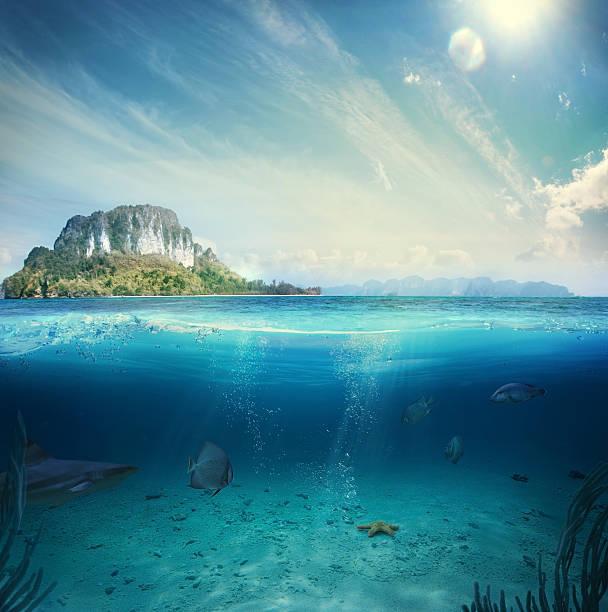 underwater part - ocean floor stock photos and pictures