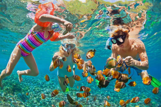 Underwater photo. Happy family snorkelling in tropical sea Happy family - father, mother, child in snorkeling mask dive underwater with tropical fishes in coral reef sea pool. Travel lifestyle, water sport adventure, swimming on summer beach holiday with kids underwater diving stock pictures, royalty-free photos & images