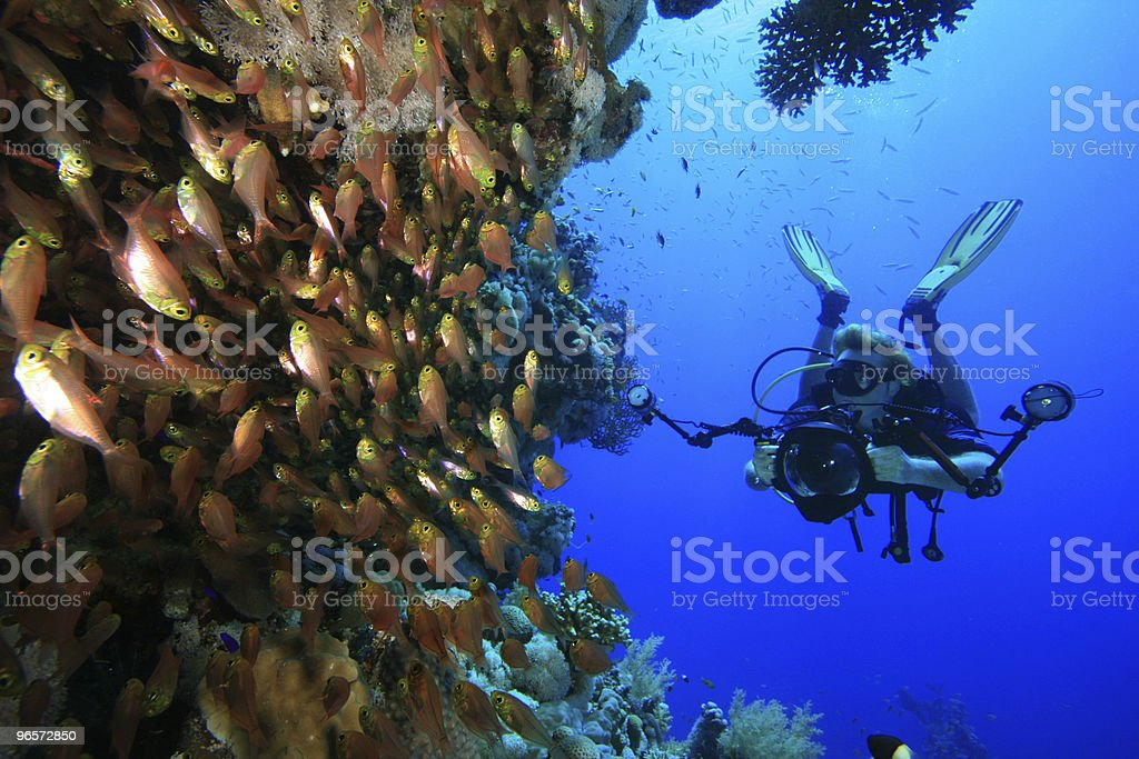 Underwater Photographer - Royalty-free Color Image Stock Photo