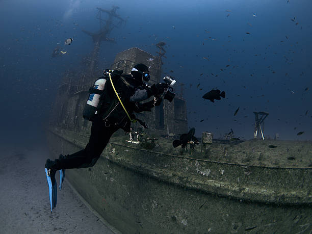 underwater Photographer takes photos of a grouper stock photo