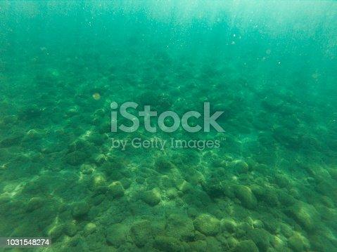 665352250 istock photo Underwater 1031548274