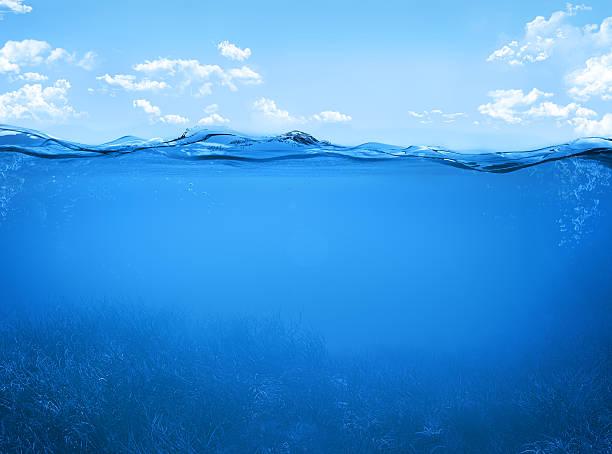 underwater - ocean under water stockfoto's en -beelden