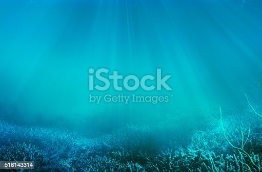 istock underwater 516143314