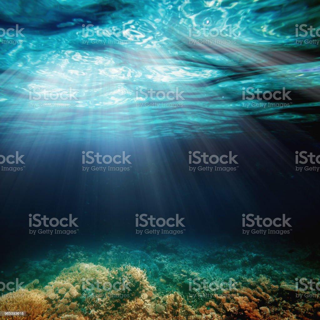 水下 - 免版稅反射圖庫照片