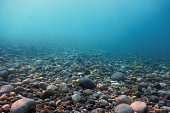Underwater Rocks and Pebbles on the Seabed