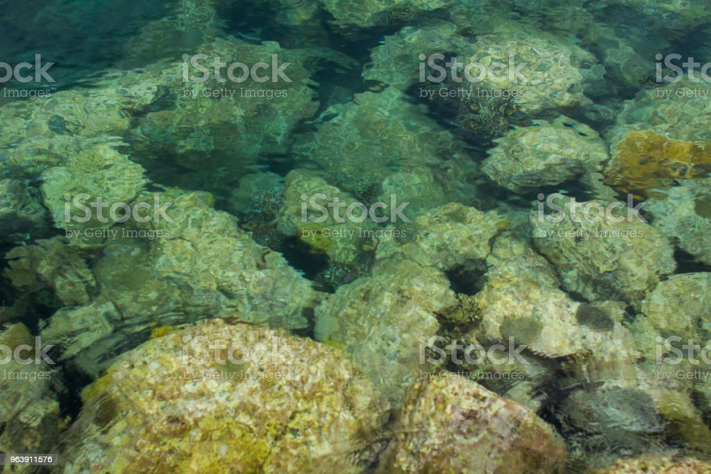 Underwater Rocks stock photo