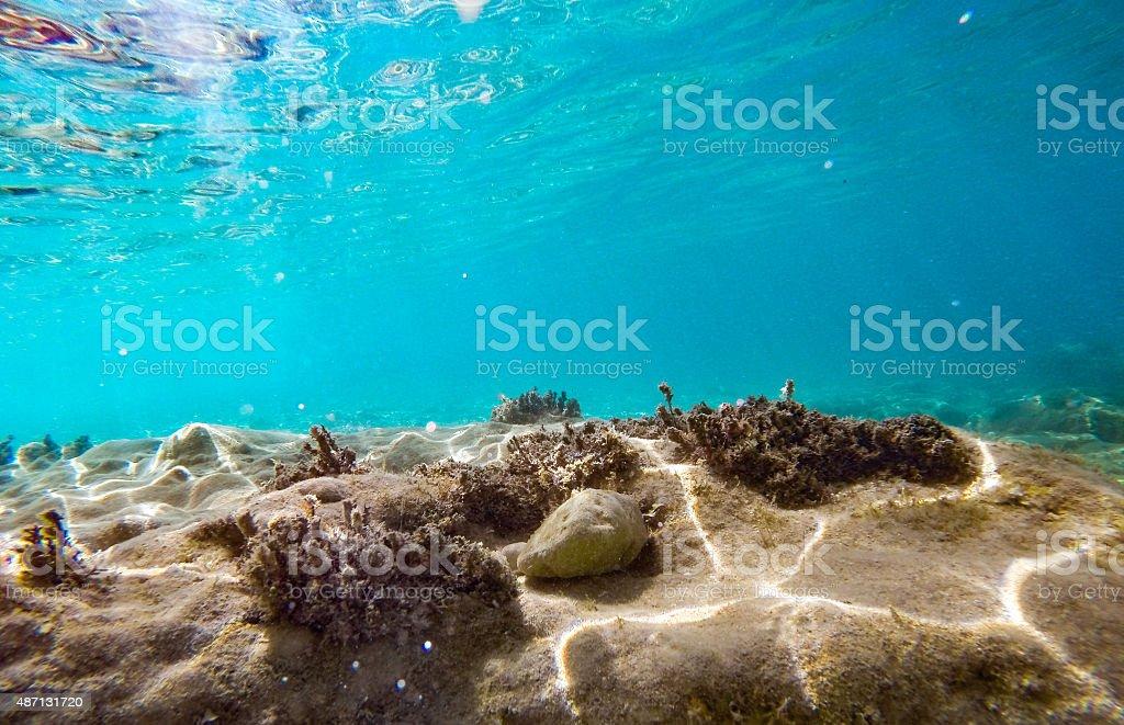 Underwater Scene 7 stock photo