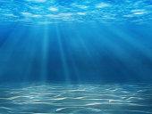 水中のシーン