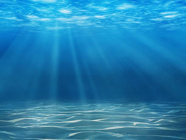 underwater scene - onder water stockfoto's en -beelden