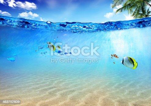 Underwater scene tropical island