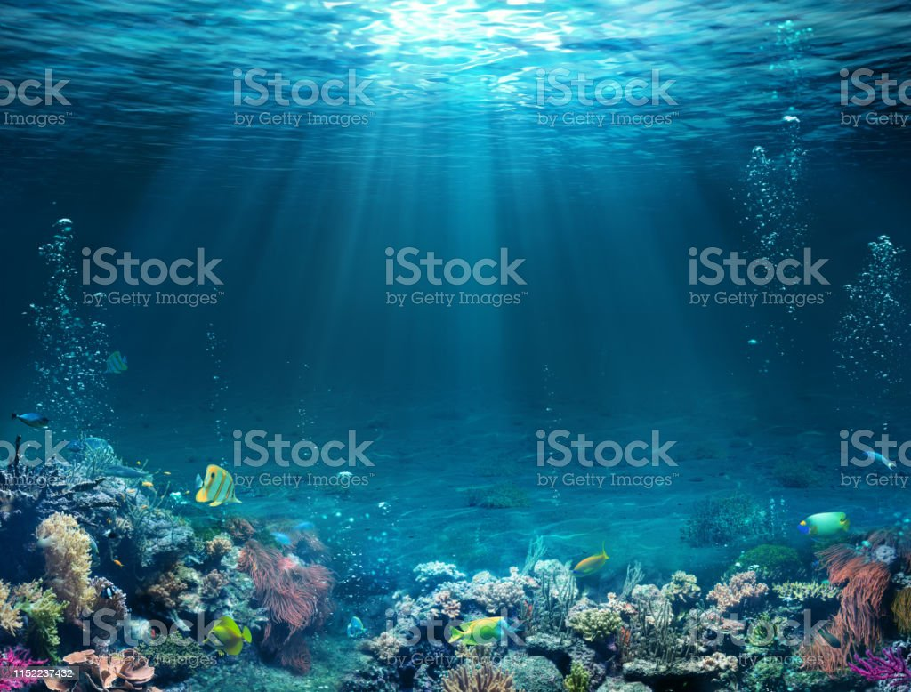Underwater Scene - Tropical Seabed With Reef And Sunshine. - Foto stock royalty-free di Acqua
