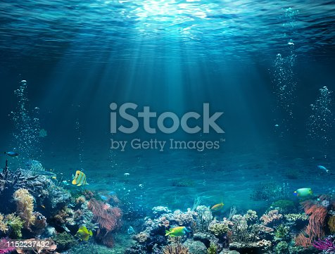 Underwater - Blue Tropical Seabed With Reef And Sunbeam