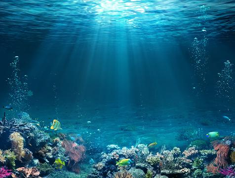 Underwater Scene Tropical Seabed With Reef And Sunshine - Fotografie stock e altre immagini di Acqua