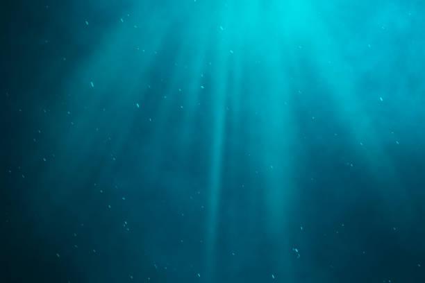 subacqueo mare, oceano con i raggi di luce. illustrazione 3d - fondale marino foto e immagini stock