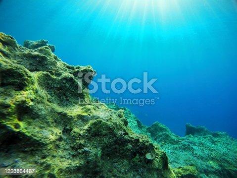 665352250 istock photo Underwater sea 1223864467