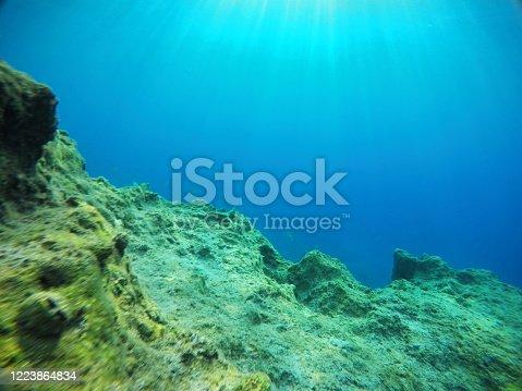 665352250 istock photo Underwater sea 1223864834