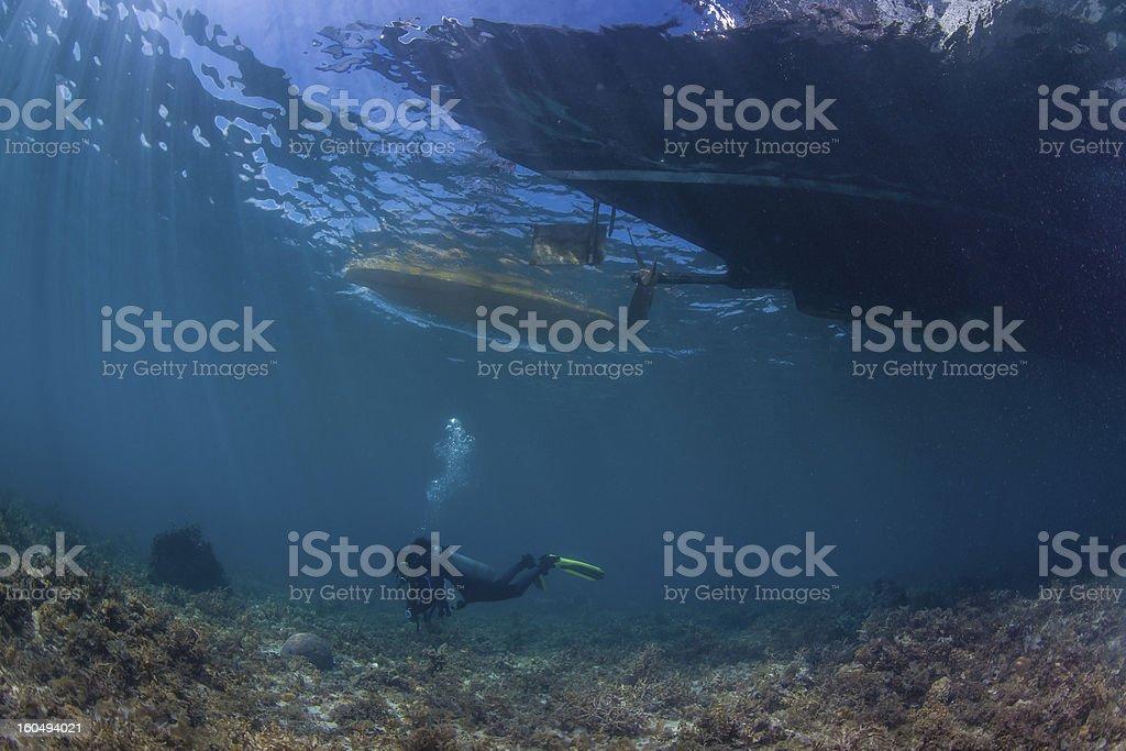 underwater sea scape royalty-free stock photo