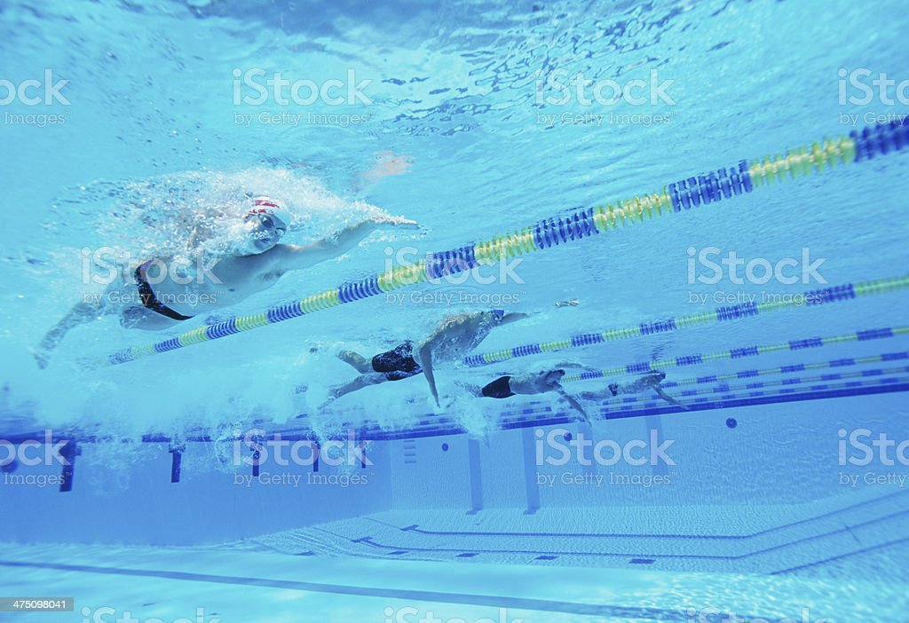 Underwater shot of four male athletes competing in swimming pool royalty-free stock photo