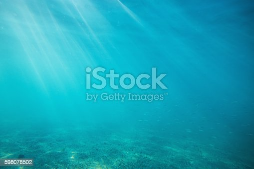 istock Underwater shot with sunrays and fish in deep tropical sea 598078502