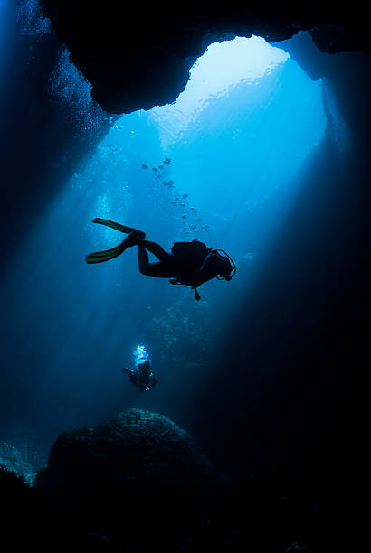 underwater swimming - underwater diving stock photos and pictures