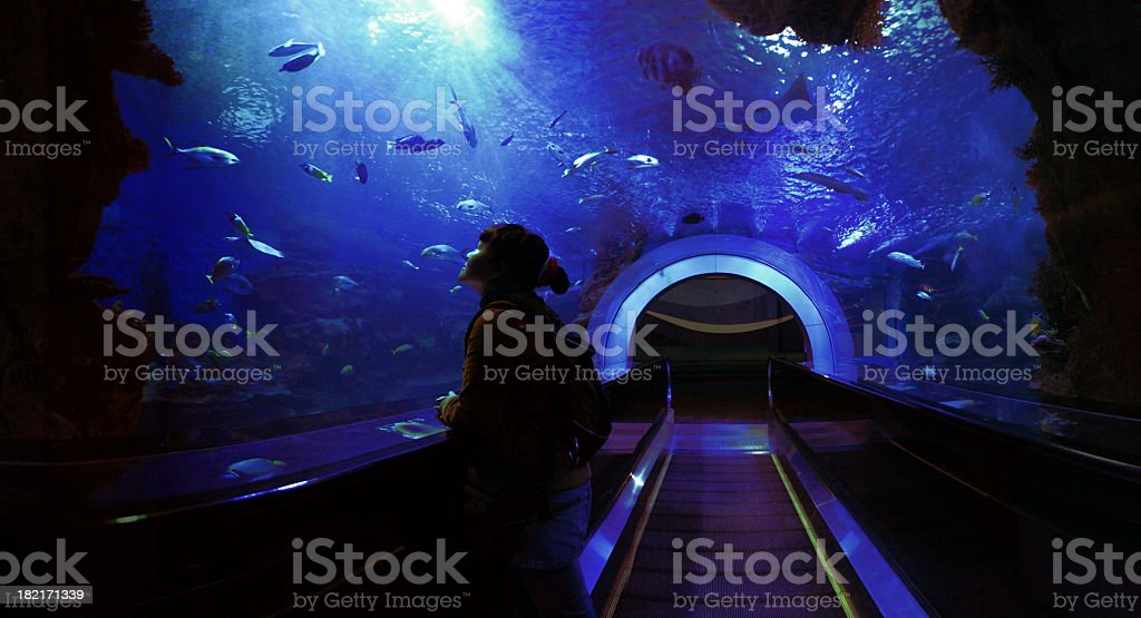 Underwater Tunnel​​​ foto
