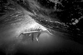 Underwater view of a surfer