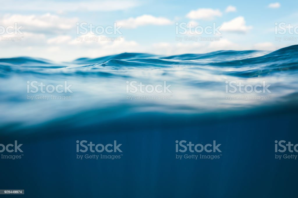 Underwater View stock photo