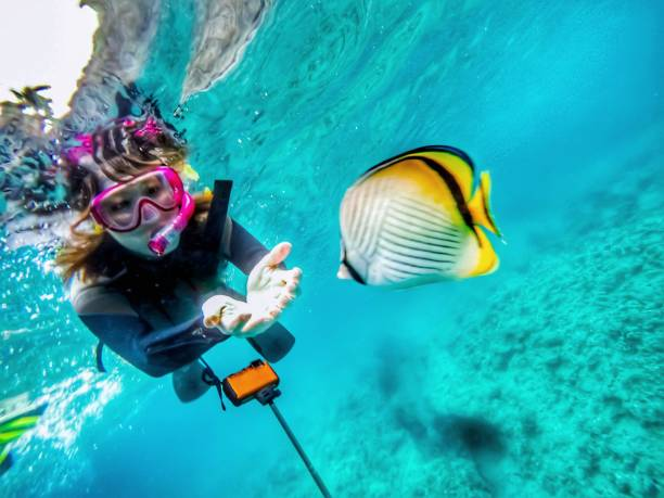 underwater woman model and fish snorkeling at the Okinawa Japan snorkel stock pictures, royalty-free photos & images