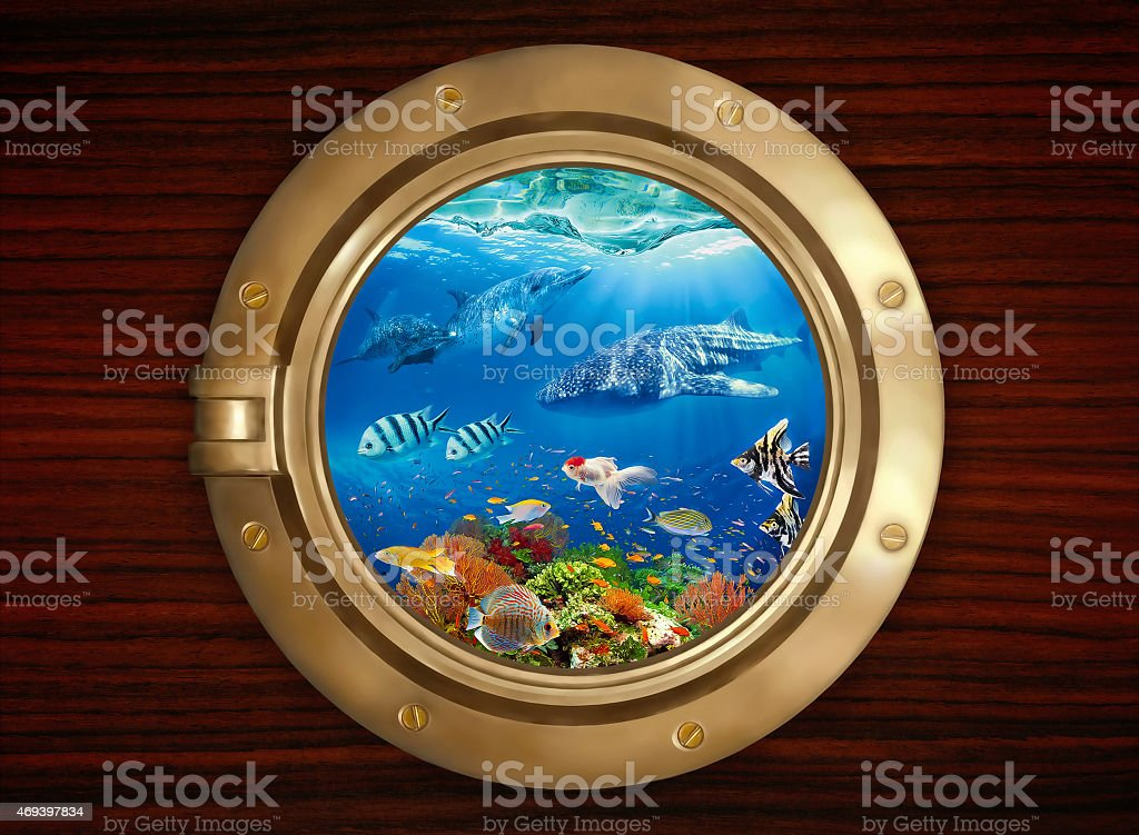 Underwater world viewed through the porthole stock photo