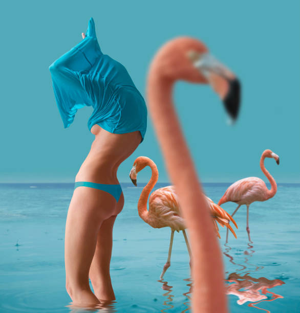 undressed girl with flamingo - naked women with animals stock photos and pictures
