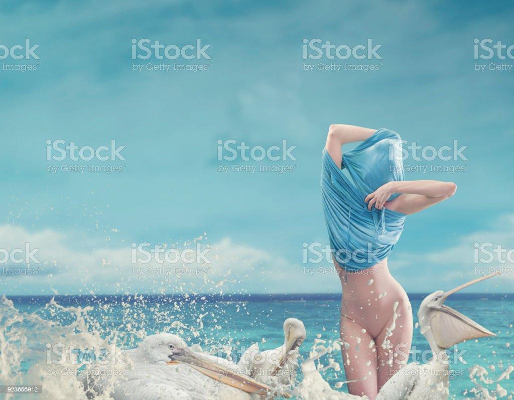 undressing women in ocean waves with pelicans stock photo