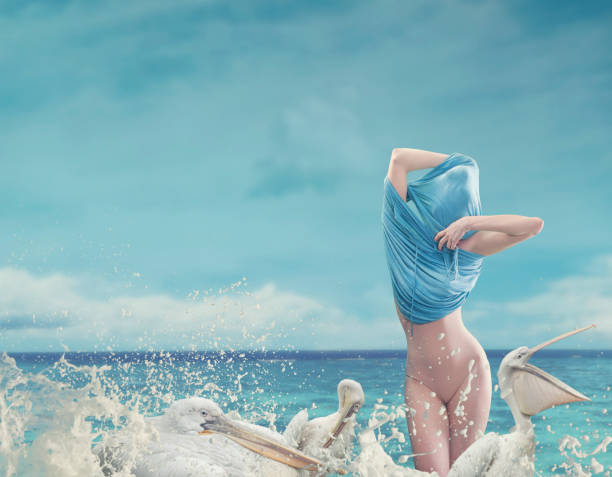 undressing women in ocean waves with pelicans - пеликан стоковые фото и изображения