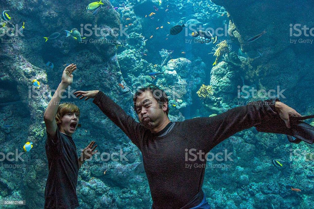 Undrwater drama stock photo