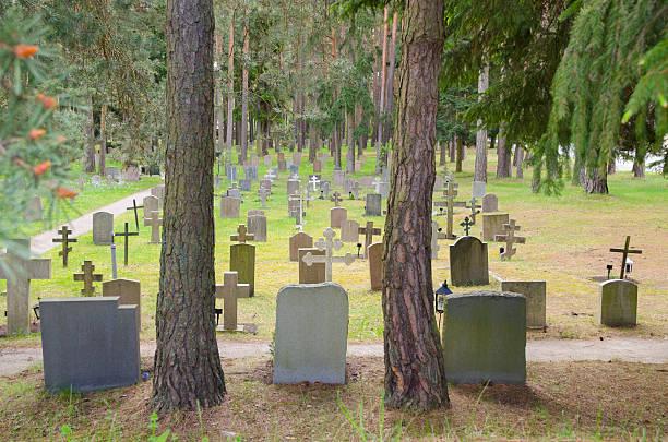 unesco-weltkulturerbe, woodland cemetery - waldfriedhof stock-fotos und bilder