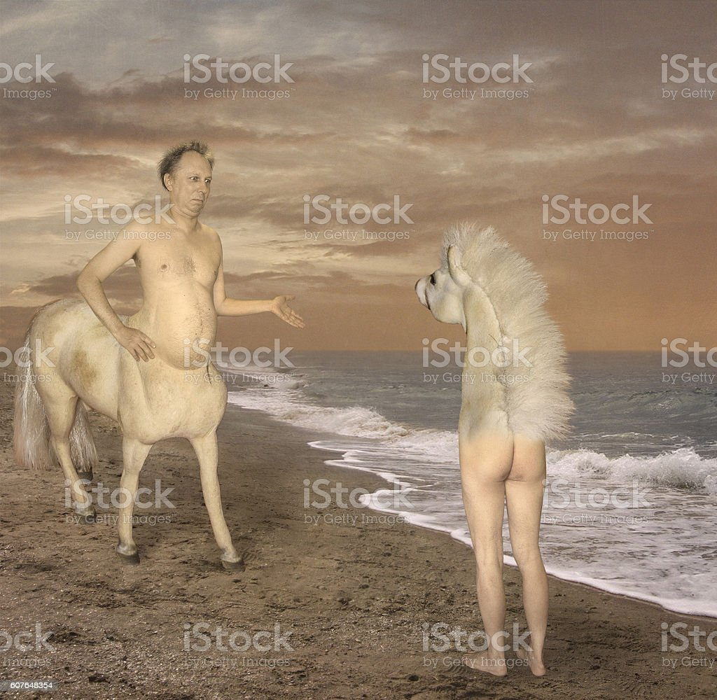Unexpected meeting on the coast. stock photo