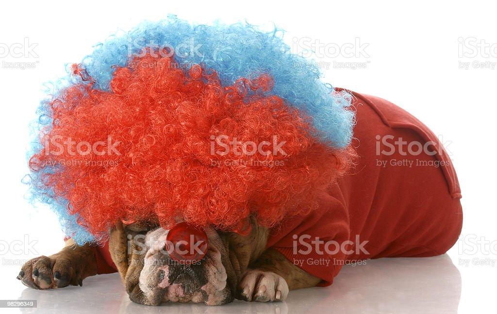 unhappy clown royalty-free stock photo