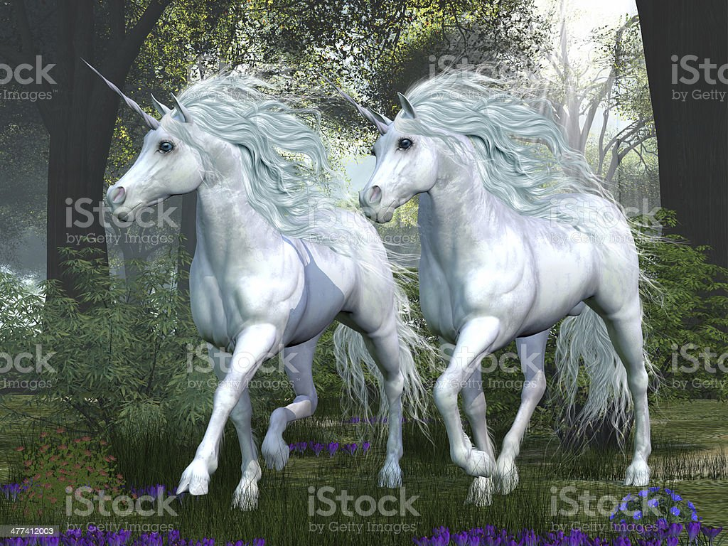 Unicorn Elm Forest stock photo
