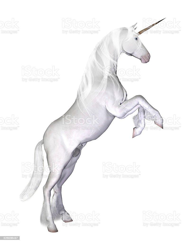 Unicorno Isolato Su Sfondo Bianco Fotografie Stock E Altre