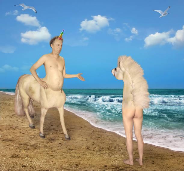 einhorn trifft auf ein seltsames pferd - cut wrong hair stock-fotos und bilder