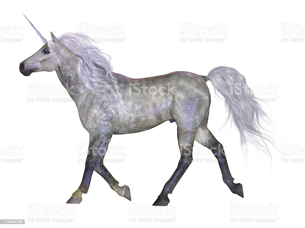 Unicorn on White stock photo