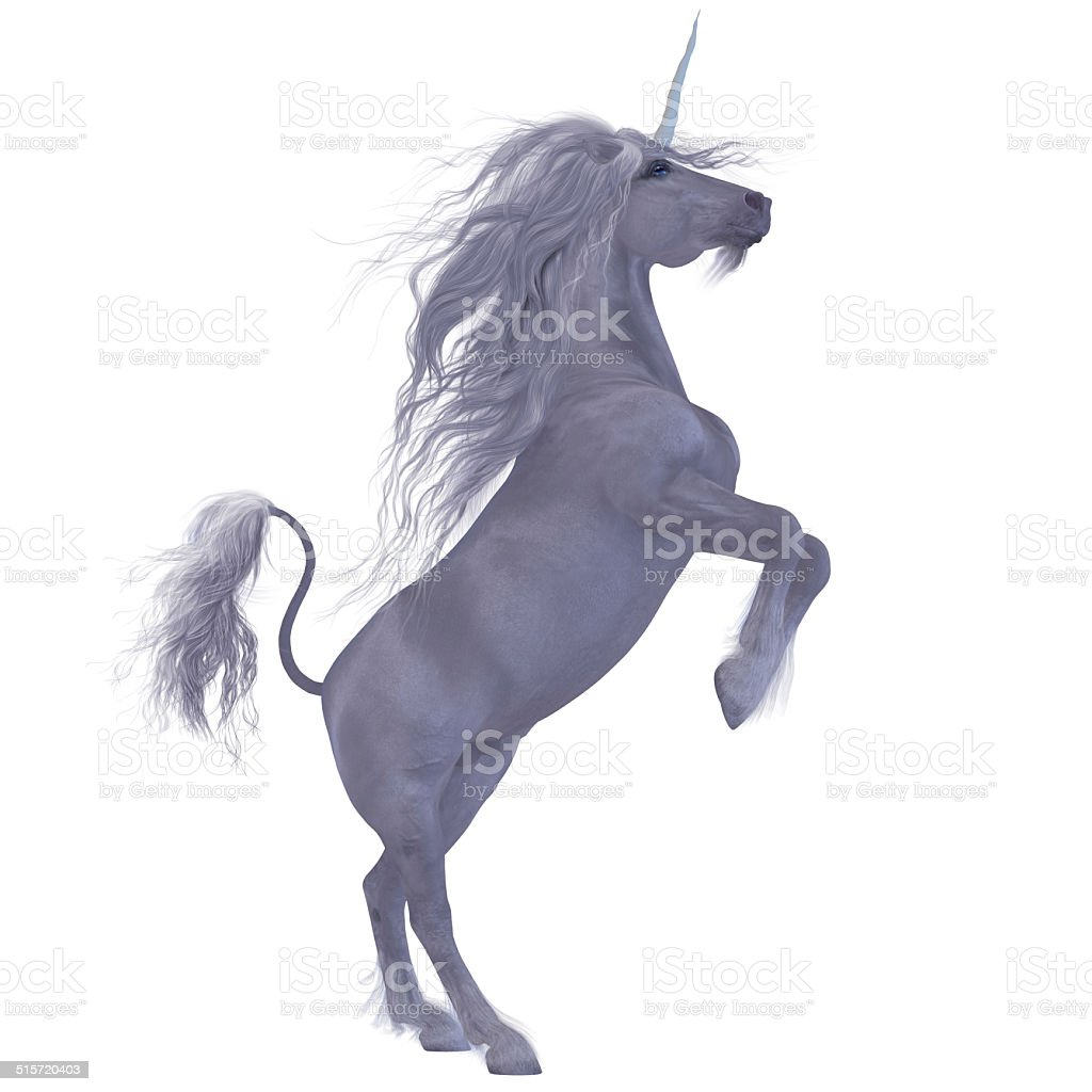 Unicorn over White stock photo