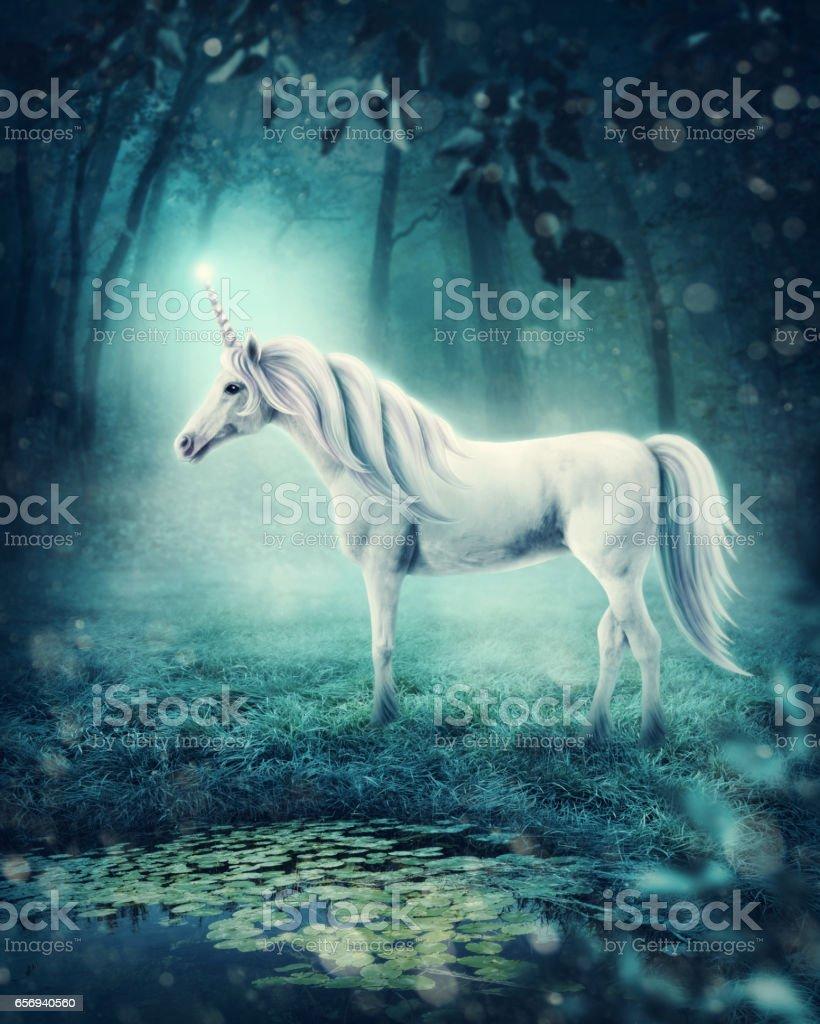 Licorne - Photo