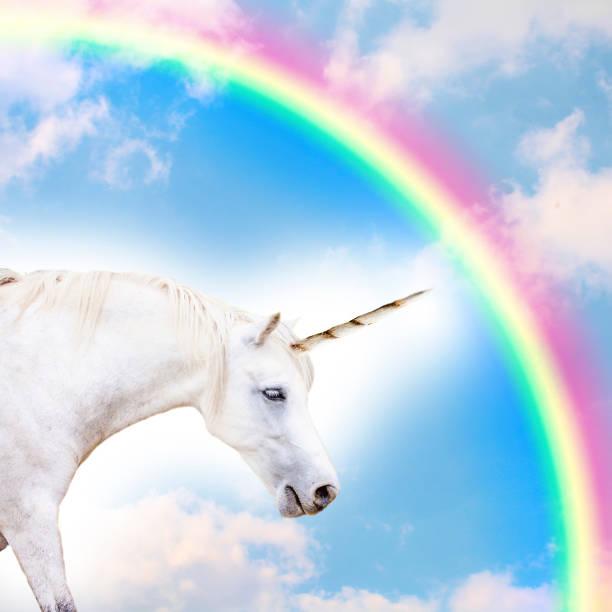 unicorn - unicorns stock photos and pictures